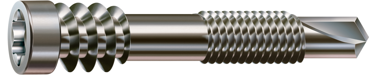 Profilbohr-Schraube Edelstahl gehärtet 5,5 x 46 61 mm Tx25 Terrassenbau 51